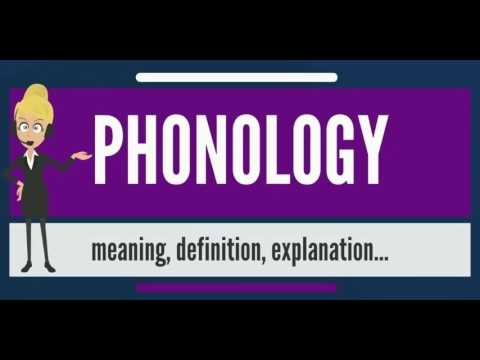 What is PHONOLOGY? What does PHONOLOGY mean? PHONOLOGY meaning, definition & explanation