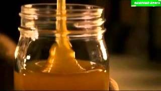 Мёд к вашему столу