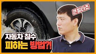 침수 피해 당한 내 차 사후 처리는 어떻게 함?! (보…