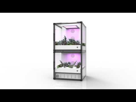 CityCrop - Automated Indoor Farming
