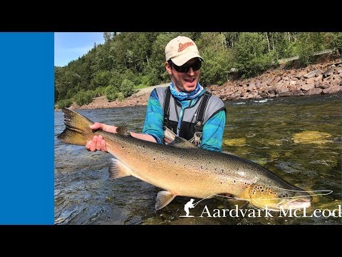 Fly fishing Winsnes, Gaula