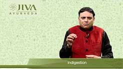 Jiva Ayurveda Remedy for Indigestion
