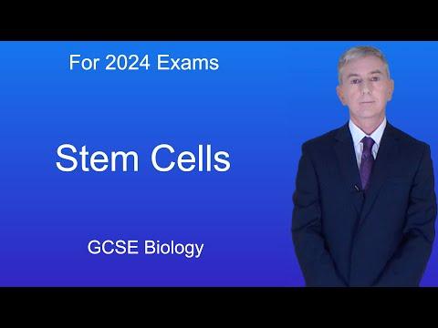GCSE Science Biology (9-1) Stem Cells