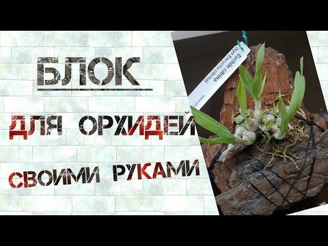 Блок для  орхидей  своими  руками.