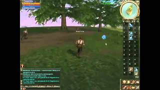 Обзор online игры Lineage 2