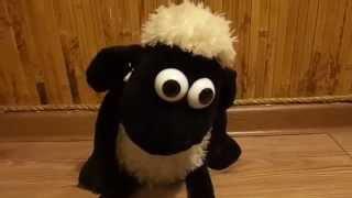 Видеообзор детская игрушка - Мягкий танцующий БАРАНЧИК ШОН Shaun the Sheep (kidtoy.in.ua)(Выбрать мягкую игрушку: https://vk.com/album-47667519_169903900 Интернет-магазин детских игрушек и хозтоваров KIDTOY - http://kidtoy.in...., 2014-11-16T14:32:13.000Z)