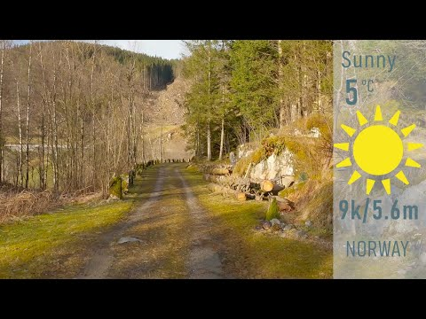 Virtual Run Spring in Norway | Treadmill Running Workout | Treadmill Walk | Indoor Cycling