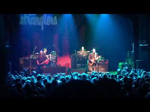 The Stranglers Midnight Summer Time live at La Cigale Paris
