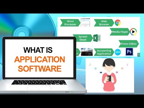What is Application Software | Computer & Networking Basics for Beginners | Computer Technology