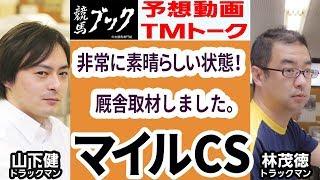 【競馬ブック】マイルチャンピオンシップ 2017 予想【TMトーク】 thumbnail