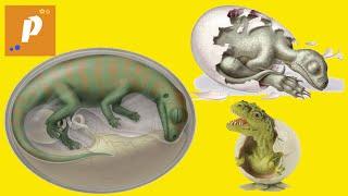Выращиваем динозавров - как вырастить гомункул динозавра