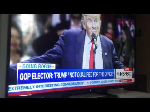 Electoral College Elector Interview