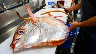 vermillionvocalists.com - Japanese Street Food - GIANT OPAH SUNFISH Okinawa Japan