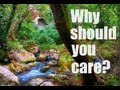 Why Should You Care About The Environment?