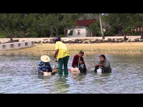 Tonga Tongatapu Pêcheuses / Tonga Tongatapu Fish women