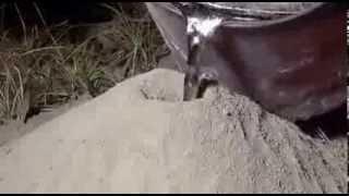 [GDB] Ce se intampla cand torni aluminiu incins intr-un musuroi !