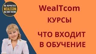 WealTcom КУРСЫ ПОДРОБНО ЧТО ВХОДИТ В ОБУЧЕНИЕ 2019