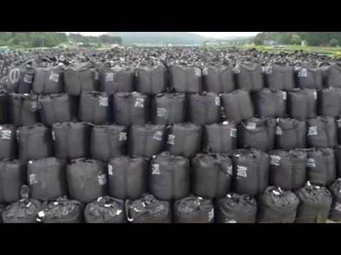 Fukushima Ecological Impact