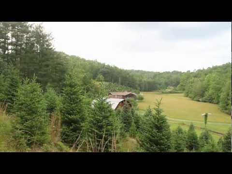 339 Acre Trout Farm | Surrounded by Pisgah National Forest | Land For Sale