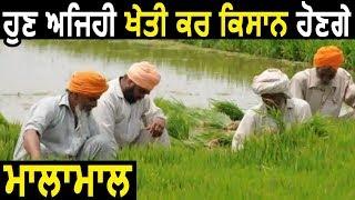 Punjab के किसानों के लिए Art of Living लाया Natural Farming की सौगात