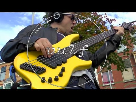 VULFPECK /// Dean Town /// Bass cover by Werner Erkelens