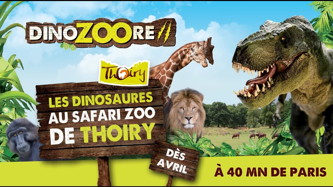 thoiry zoo review meet
