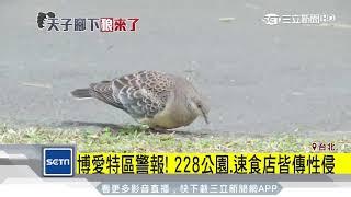 你好漂亮!博愛特區男脫女衣「性侵未遂」│三立新聞台