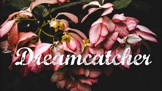 Dreamcatcher ⭐️ Acoustic / Alternative Pop Beat [By Robodruma & Radio Paint]