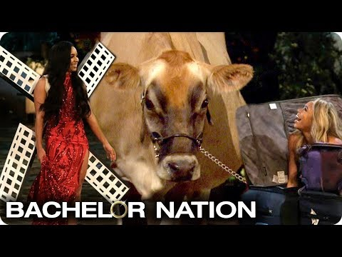 Who Made The Best Entrance?  | The Bachelor