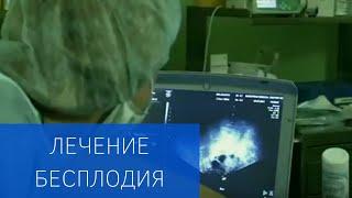 Лечение бесплодия в Клинике репродуктивной и пренатальной медицины ЕМС
