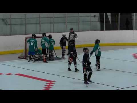 Luke's Dek Hockey Saves vs. Avalanche
