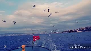 Umid reqsi #istanbul #vlog 1