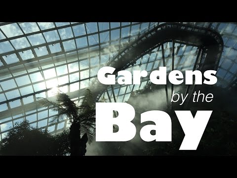 Gardens By the Bay in Singapore | Nature with Cutting Edge Tech | Sid the Wanderer