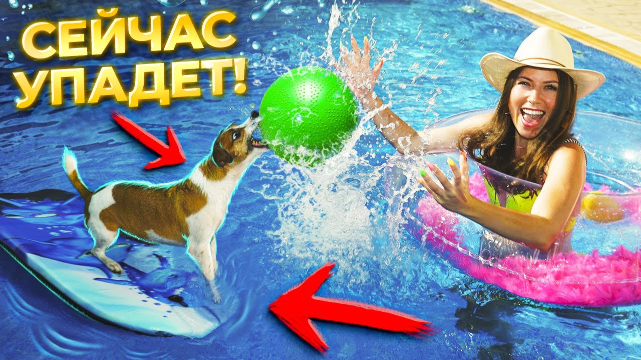 ЭКСТРЕМАЛЬНЫЙ АКВАПАРК для Собаки Джины в Бассейне с Яйцом на Кипре | Elli Di Pets