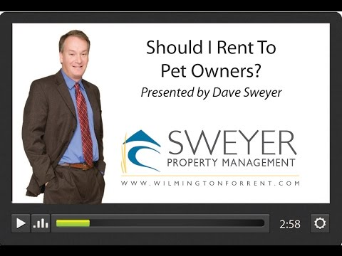 Should I Rent to Pet Owners? Wilmington Landlord Education