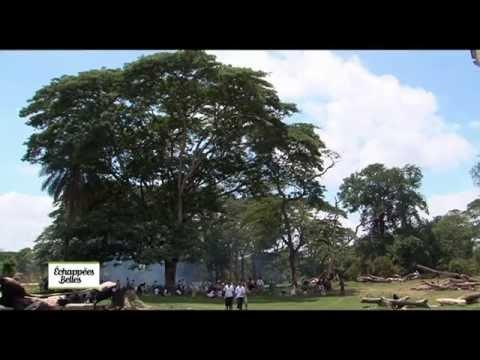 Madagascar : L'île rouge - Echappées belles