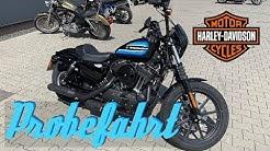 Harley Davidson Sportster 1200 Iron | Probefahrt | MotoVLOG