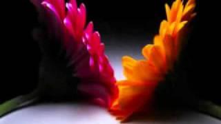 Hum Tumse Juda Hoke Mohammad Rafi - Sad Song.flv.mp3