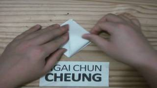 Origami Tulip Flower (tutorial)