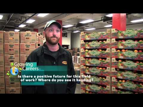 Career Profile: Dock Worker
