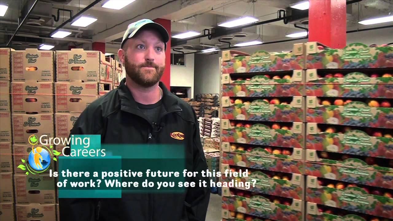 career profile dock worker youtube