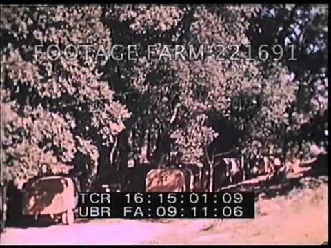1939-1941 China Documentary 221691-01 | Footage Farm