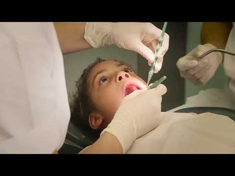 Zahnmedizin Studieren in Zürich