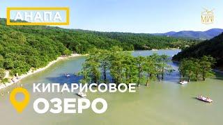 Кипарисовое озеро Сукко Анапа 2019 озеро деревья в воде Черное море #дикийдикийЮг #mw_i