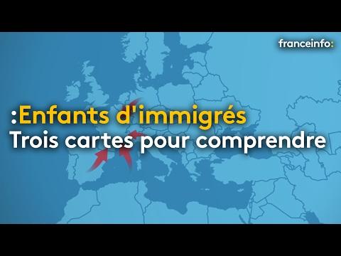 Trois cartes pour comprendre la situation des enfants d'immigrés en France - franceinfo