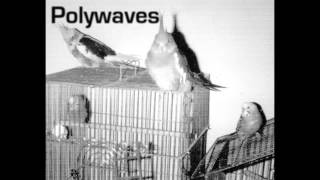 Polywaves - Collagen Rock