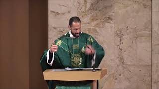 Fr Saenz Homily 19th Sunday in Ordinary Time