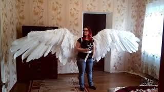 механические крылья  articulating wings demo