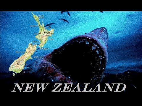 Legendary 36ft Shark Lurking Off New Zealand Island