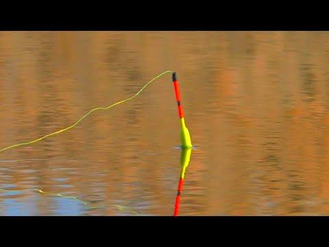 рыбалка весной 2020 КАРАСИ УТАСКИВАЮТ ПОПЛАВОК